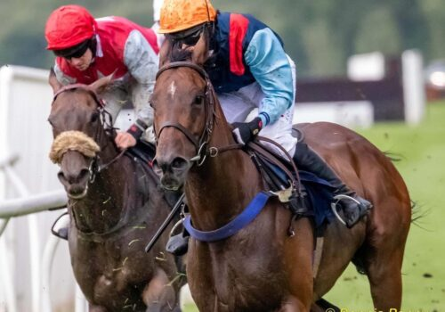 Golden Town wins again at Perth racecourse